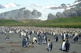 Onde Ficar nas Ilhas Malvinas